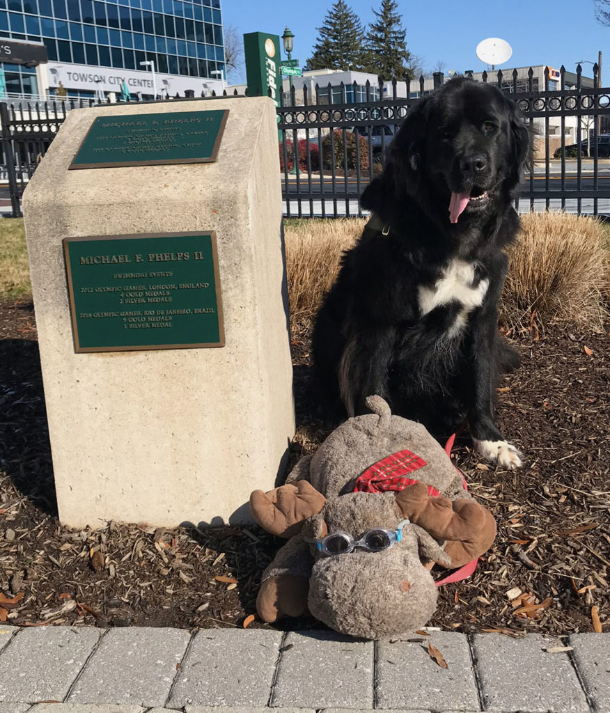 Maebh at Olympic Park in Towson, Maryland at the plaque of Baltimore's most famous Olympian Michael Phelps.